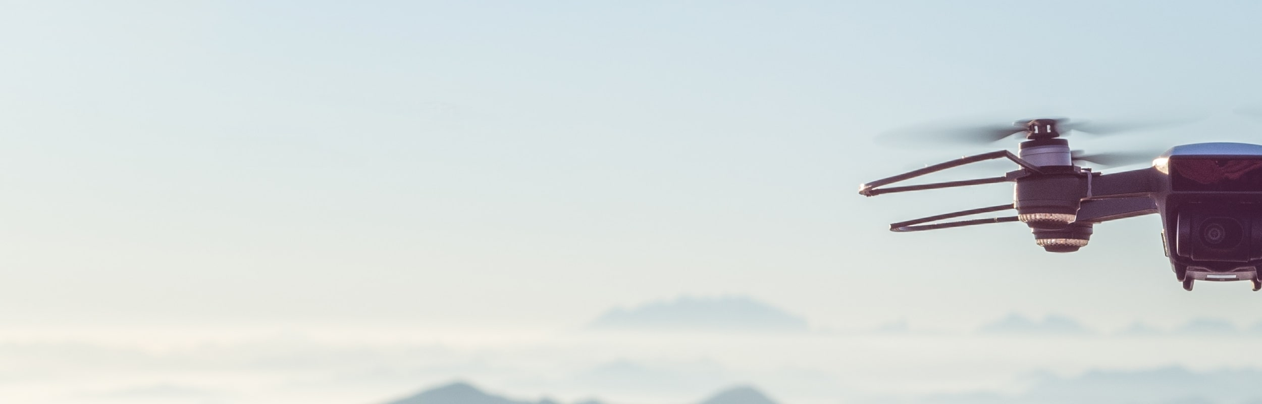 search-results-banner