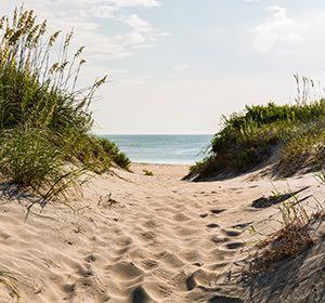 Corporate ocean coast image