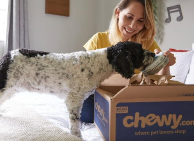 A black and white dog taking a peek at what is inside a newly delivered Chewy box while its owner opens it up