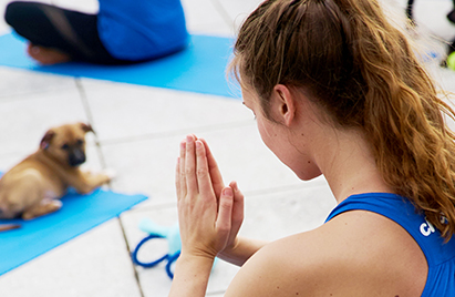 A Chewy team member performing a yoga pose with hands touching together, next to a brown dog laying on a yoga mat