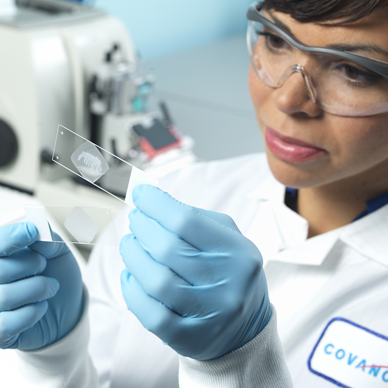 Revolutionizing cancer treatment