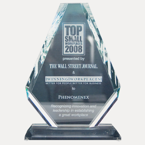 Top small workplaces 2008 award