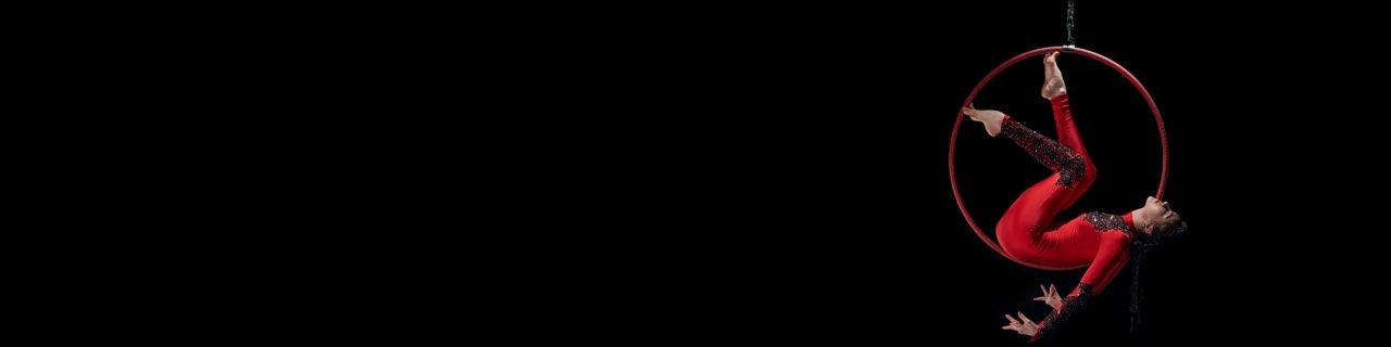 ERP Platforms