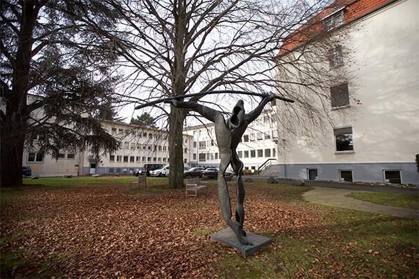 Bonn statue