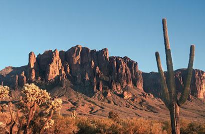 Butte and cactus near Chandler, AZ