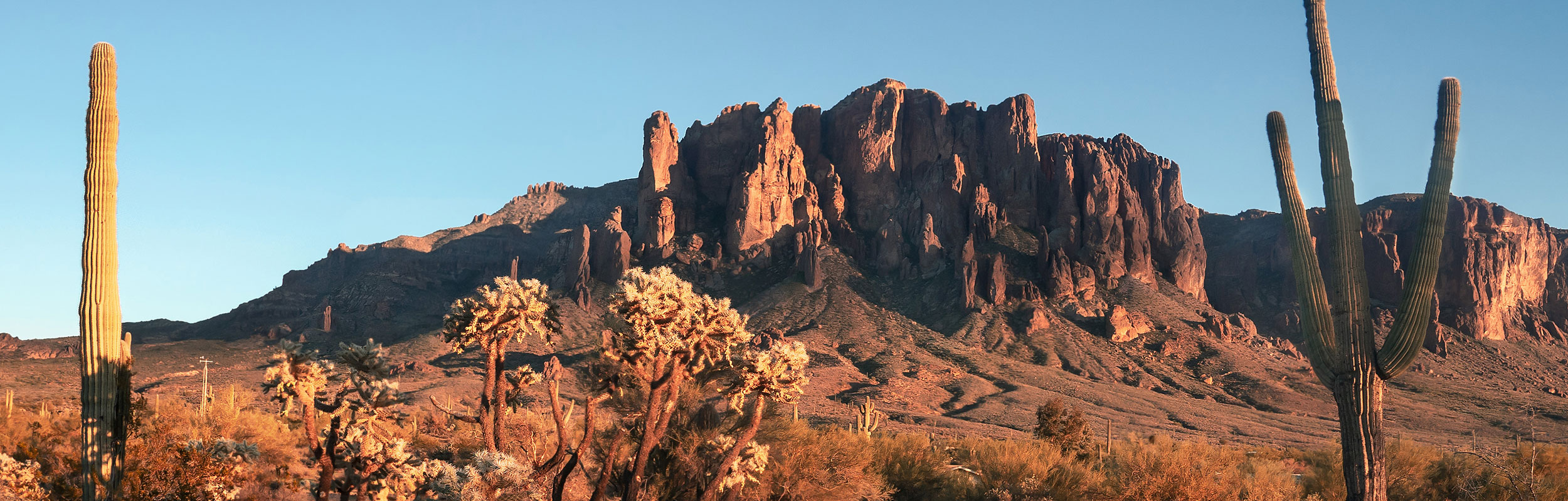 Butte and cacti in desert