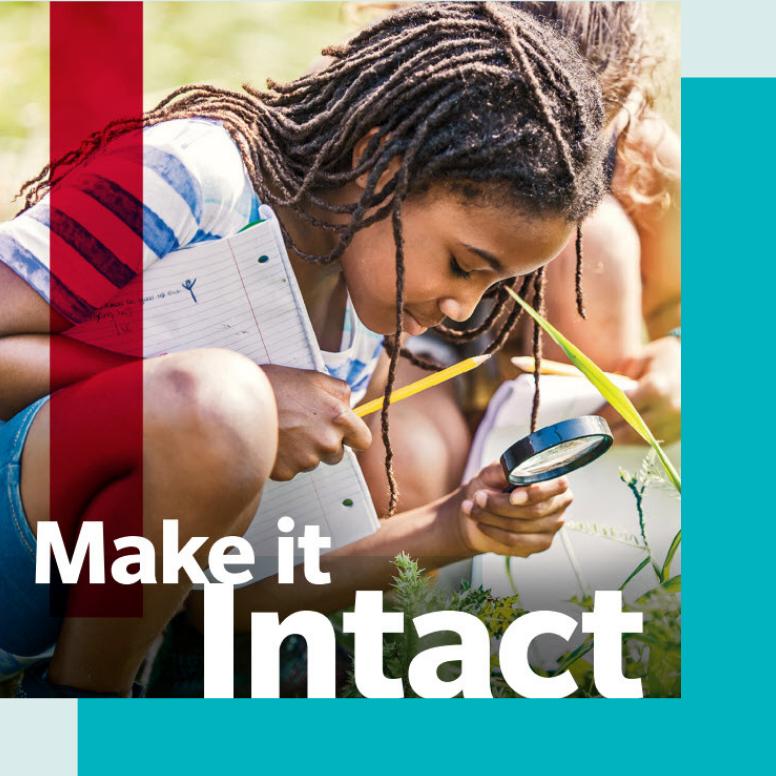 Intact Social Impact Report