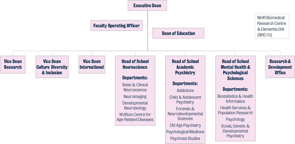 IoPPN Faculty and Schools structure