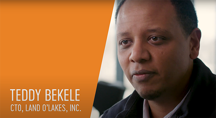 Teddy Bekele, Chief Technology Officer