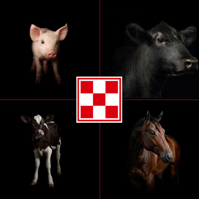Purina Logo Animals