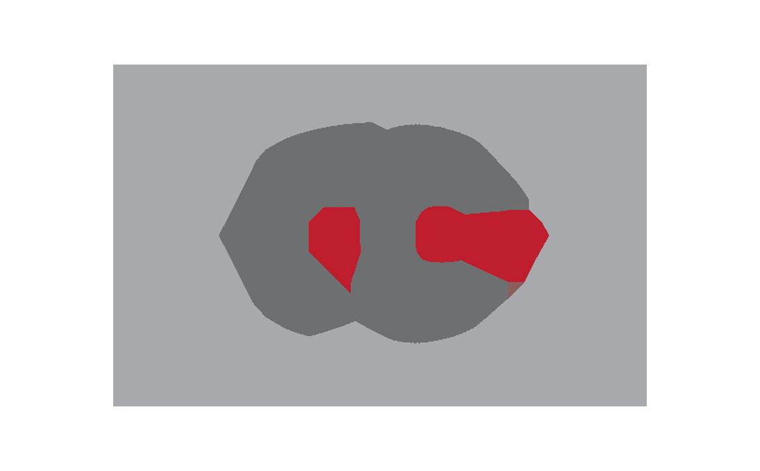 FG Logo