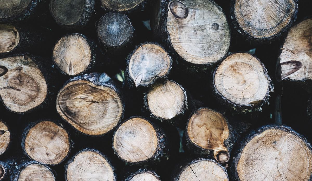 Stacked logs at LaSalle Lumber photo by Bence Balla-Schottner on Unsplash
