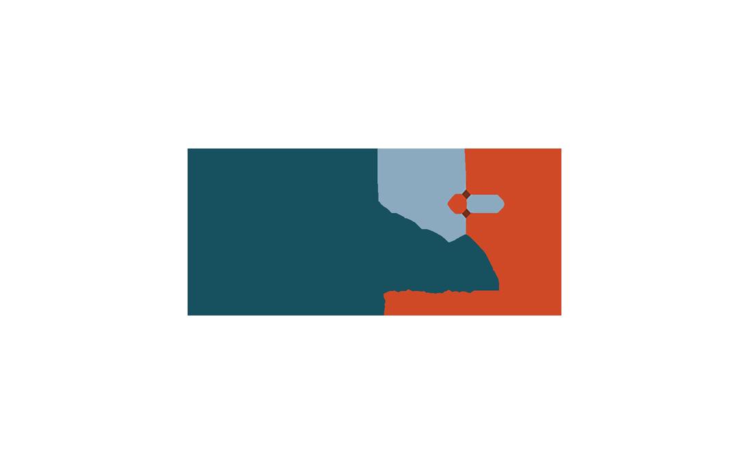 Performance Software Corporation Logo