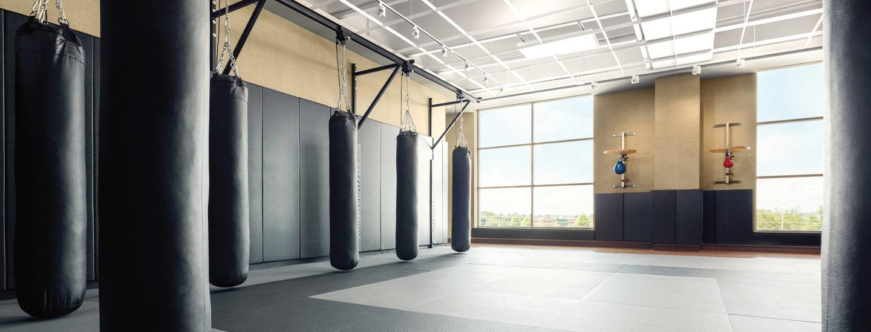 Mixed Martial Arts Room