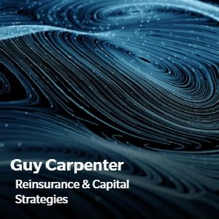 Guy Carpenter Resseguro & Estratégias de Capital