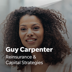 Guy Carpenter, réassurance et stratégies capitales<br/>