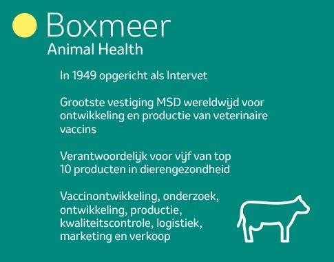 boxmeer landing nl