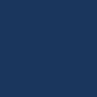 BTP Icon