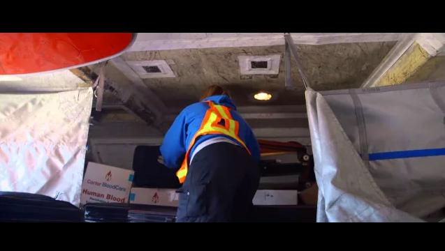 An Employee loads bags on a plane