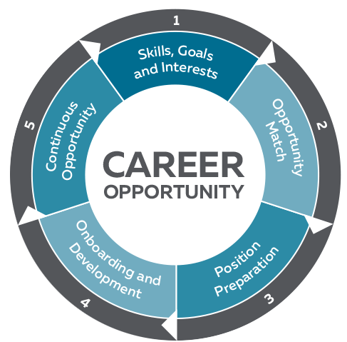 Career Opportunity wheel