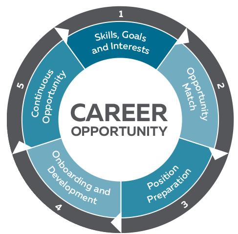 La roue des perspectives d'emploi