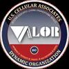 Veteran Associates Leading Organizational Results