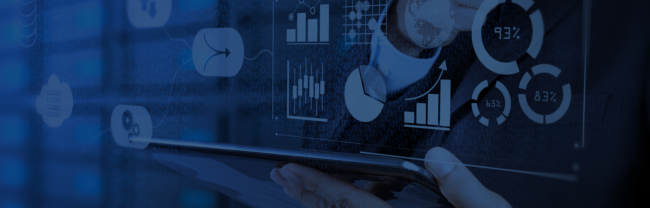 Information Technology / Data Analytics