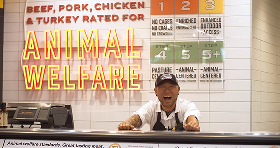 Animal Welfare Meat Team Member
