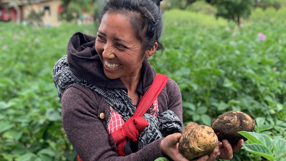 Whole Planet Foundation Partner Holding Crops